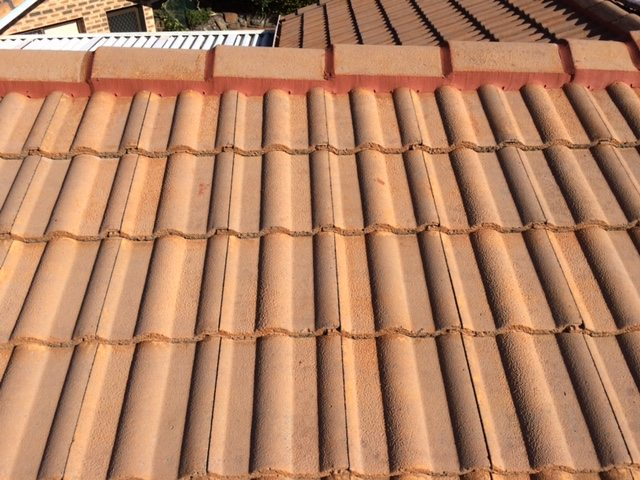 After roof cleaning 2